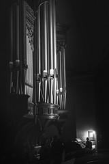 Ben Frost, Tony Conrad & John Chantler at Church of St John-at-Hackney, London (Dawid Laskowski) Tags: bird london church st john wire frost ben tony organ violin modular solo aurora hackney harris minimalism thor conrad synthesizer sessions on the mander chantler room40 johnathackney