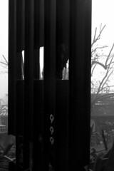 P1040988 (Abode of Chaos) Tags: portrait sculpture streetart france art mystery museum architecture painting graffiti ruins rawart outsiderart chaos symbol contemporaryart secret 911 apocalypse taz peinture container artbrut ddc sanctuary cyberpunk landart alchemy modernsculpture prophecy 999 vanitas sanctuaire dadaisme artprice salamanderspirit organmuseum saintromainaumontdor demeureduchaos thierryehrmann alchimie artsingulier prophtie abodeofchaos facteurcheval palaisideal postapocalyptique maisondartiste artistshouses sculpturemoderne gesamtkuntwerk groupeserveur lespritdelasalamandre servergroup