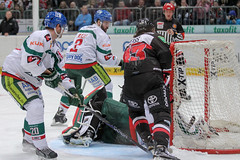 """DEL15 Kšlner Haie vs. Augsburg Panthers • <a style=""""font-size:0.8em;"""" href=""""http://www.flickr.com/photos/64442770@N03/16116445677/"""" target=""""_blank"""">View on Flickr</a>"""
