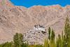 Chemrey Monastery (clickwlick) Tags: india monastery leh ladakh gompa chemreygompa chemreymonastery