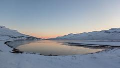 Winter day (*Jonina*) Tags: iceland ísland faskrudsfjordur fáskrúðsfjörður village þorp reflection speglun winter vetur snow snjór jónínaguðrúnóskarsdóttir 500views 25faves 50faves 1000views