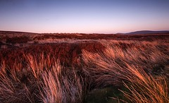 Last light on the Featherbeds (Rus) Tags: landscape sundown wicklow manfrotto lastlight cablerelease featherbed sigma1020 nikond5000