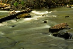 2016_0520Porter-Brook0007 (maineman152 (Lou)) Tags: nature water landscape spring stream maine may brook flowing millbrook naturephotography landscapephotography flowingwater naturephoto landscapephoto millbrookwaterflowing