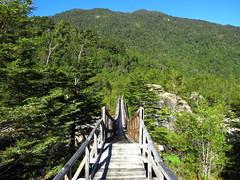 Bridge over Ventisquero river (Ratee Rats) Tags: chile park parque patagonia canon national nacional aysen queulat sx50hs