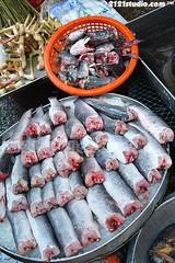 Fresh Snakehead Fish (2121studio) Tags: thailand bangkok siam travelphotography amazingthailand  travelinthailand khlongtoeymarket khlongtoeimarket  landoftiger landofwhiteelephant thaitourinformation