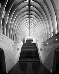 Symmetric Stairs (frank_w_aus_l) Tags: art monochrome architecture stairs perspective arches railwaystation centraal lttich nikond7000