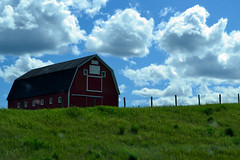 The Red Barn (~ Mariana ~) Tags: friends sky foothills canada clouds fence landscape nikon wind sunny ab redbarn mariana hff marculescueugendreamsoflightportal