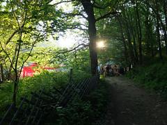 seedcamp_2016_thomas-neumann (9) (seedcamp) Tags: festival austria treeoflife waldviertel 2016 kautzen seedcamp