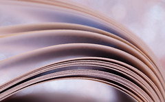 Curves (Okan AKGL) Tags: curve abstract texture minimalism pastel geometric lines arch dof depthoffield book page leaf macro bokeh