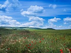 Robaba la nube luz (Jesus_l) Tags: espaa europa valladolid provincia camposdecastilla jessl