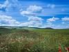 Robaba la nube luz (Jesus_l) Tags: españa europa valladolid provincia camposdecastilla jesúsl