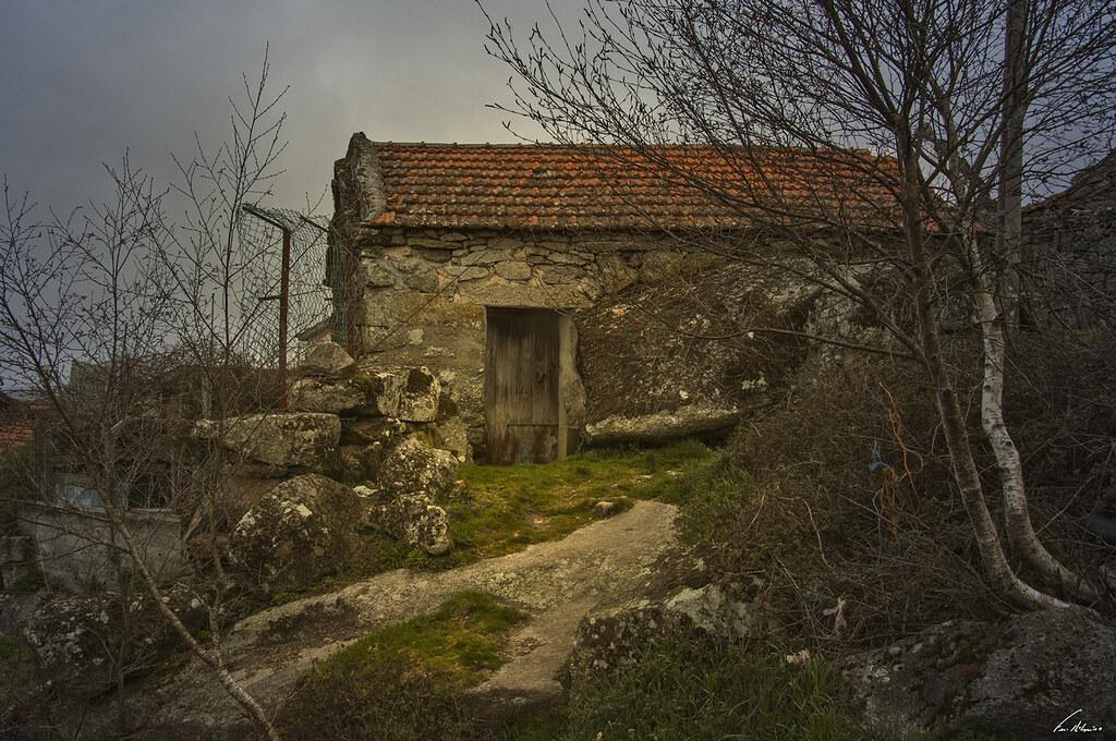 1600-pedrario (129)
