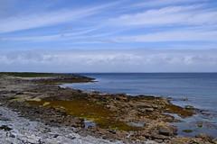 DSC_0997 (kulturaondarea) Tags: viajes irlanda bidaiak