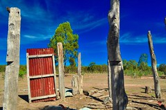 the way out ? (HOLLY HOP) Tags: door red abandoned rural wow tin bush gate outdoor decay shed rusty australia bluesky victoria reddoor posts derelict ruraldecay corrugatediron rustyandcrusty goldsborough hss farmshed centralvictoria sliderssunday