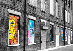 landscape colours on the mill contrast (PDKImages) Tags: urban streetart art mill abandoned beauty lady contrast manchester graffiti eyes colours anger lips fortune hidden angry drama fortuneteller unexpected teller liom