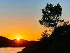 Karmy, Norway (Vest der ute) Tags: sunset sea seascape tree norway rogaland karmy fav25 g7x