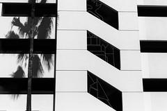 Orlando Parking Garage (www.daevans.co.uk - Street Photography Workshops i) Tags: leica shadow blackandwhite usa sun geometric orlando garage parking palm monochrom