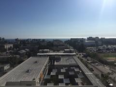 Oceanview from our hotel (JenGallardo) Tags: blue blueskies ca cali california merlardoxcountry ocean oceanview palmtrees palms santamonica vacation