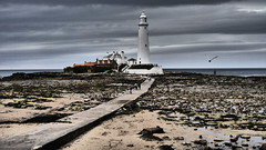 St. Mary's Lighthouse (Victor W Adams) Tags: stmaryslighthouse stmarys lighthouse marine maritime light navigation whitleybay northeast rivertyne northsea safety ships shipping landscape coast coastal marinesafety colour color colorful colors colourful colours architecture causeway path pavement people seagull beach panasonic lumix g5 digital tyneandwear
