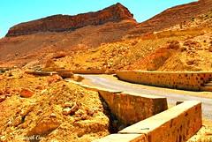 Djerba 2010 149 (Elisabeth Gaj) Tags: djerba2010 elisabethgaj tunisia afryka travel landscape