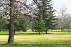 Prince of Wales Country Club / Santiago / Chile (Leon Calquin) Tags: leon calquin fotos leoncalquin photos videos santiago chile flickr quincal diseo catalog catalogo senderismo hiking travel viajes golf prince of wales country club