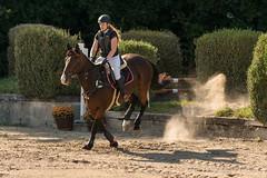 DSC02230_s (AndiP66) Tags: aespli derby hindelbank springen 2016 pferd horse schweiz switzerland kantonbern cantonberne concours wettbewerb horsejumping springreiten pferdespringen equestrian sports pferdesport sport sony sonyalpha 77markii 77ii 77m2 a77ii alpha ilca77m2 slta77ii sony70400mm f456 sony70400mmf456gssmii sal70400g2 andreaspeters bern ch september