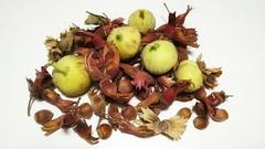 Higos y avellanas. (jumaro41) Tags: comida food higos huerta avellanas huerto septiembre