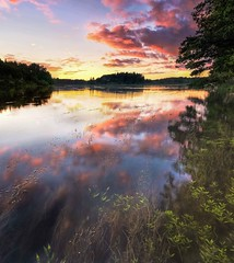 theriver (-wikstrom-) Tags: pentaxk5 pentaxart sweden frnebofjrdensnationalpark sigma1750 leefilters leehardgrad06 dallven color colorful sunset july panorama panoramic water stream river nature pentaxian