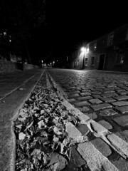 (1M069780 E-M1 7mm iso200 f11 13s) (Mel Stephens) Tags: 20161006 201610 2016 q4 old aberdeen scotland uk structure night nighttime bw black white silver efex leaves road le long exposure plants visions olympus omd em1 m43 microfourthirds mirrorless 714mm pro mzuiko