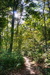 DSC05440-42_HDR (Capt Kodak) Tags: autumn chattahoocheerivernationalrecreationarea fall hdrefexpro2 madefrom3images medlockbridgepark nationalparkservice nikcollectionbygoogle niksoftware photomerge