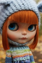 Hi all!! I'm Clementina 🍊  ❤️❤️❤️❤️❤️❤️❤️❤️❤️❤️❤️ Hola a todos!!! Soy Clementina 🍊