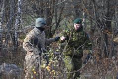Team building in Estonia (U.S. Army Europe) Tags: team estonia 1st 28 tapa combat stallion nato ironhorse usarmy usarmyeurope usareur 1stcavalrydivision firstteam 2ndbattalion 1bct 28cav 1stbrigadecombatteam 8thcavalryregiment ironhorsebrigade operationatlanticresolve 1bct1cd