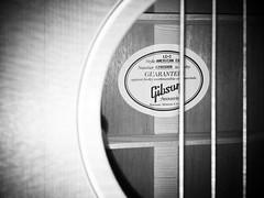 Guitar in black & white (anubis131) Tags: music blackwhite guitar instruments schwarzweiss gibson iphone6