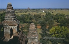 Bagan, landscape (blauepics) Tags: landscape pagoda asia sdostasien burma stupa religion ruin buddhism ruine temples myanmar 1992 southeast landschaft birma pagan bagan tempel pagode buddhismus