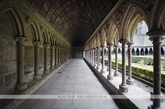 Mont St Michel Cloister, France (Naomi Rahim (thanks for 3 million visits)) Tags: travel france heritage church floral abbey architecture garden religious nikon europa europe catholic arch gothic columns arches medieval historic norman unesco wanderlust monastery normandie cloister normandy carvings petite montstmichel montsaintmichel abbaye travelphotography normande jardan nikond7000 naomirahim