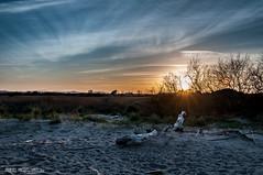 Posta de sol a la Gola del Ter (juancajuarez) Tags: sunset atardecer pals postadesol goladelter