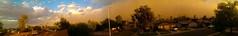 (seanlewis) Tags: street trees arizona sky clouds rooftops wind panoramic residential duststorm lightpole tempe haboob arizonaphotographersgroup