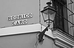 (Nick Breadner) Tags: street light streets history lamp corner spain nikon seville caro rodrigo j1