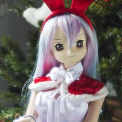 Obitsu Custom Yuka F04WG C-Icon Christmas (reihsi) Tags: doll bjd 13 merrychristmas obitsu