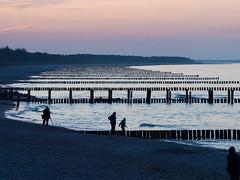 Zingst - Buhnen in der Abenddämmerung  II (Teelicht) Tags: sea beach strand germany deutschland meer balticsea groyne ostsee vorpommern zingst mecklenburgvorpommern buhne meckpomm