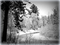 The East Branch of the Escanaba River (yooperann) Tags: winter snow ice river day branch michigan east upper peninsula escanaba gwinn