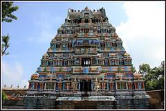 4781 - Saptha Sthana Sthalangal Series 05 (chandrasekaran a 30 lakhs views Thanks to all) Tags: flowers india heritage fruits architecture temple rice culture traditions temples jewels hinduism tamilnadu brahma ghee gopurams thiruvaiyaru arulmigu kandiyur sundarar  thevaram sotruthurai  aiyarappan panchanatheeswarar poonthuruthi sapthasthanasthalangal vedikudi  vedicpandits sevensacredtemples thiruvaiyarutemple neithanam pazhanam