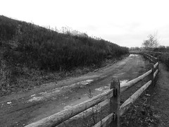 Trail around the former landfill at Hawk Rise Sanctuary (Dendroica cerulea) Tags: road winter blackandwhite fence newjersey linden nj trail landfill unioncounty hawkrisesanctuary rahwayrivergreenway lindenlandfill