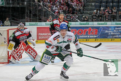 """DEL15 Kölner Haie vs. Augsburg Panthers 10.12.2014 036.jpg • <a style=""""font-size:0.8em;"""" href=""""http://www.flickr.com/photos/64442770@N03/16003452156/"""" target=""""_blank"""">View on Flickr</a>"""
