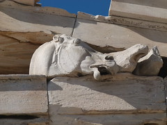 Horse in Agony Sculpture - Parthenon (Toats Master) Tags: archaeology ruins athens greece historical acropolis