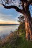 Tacoma (imandrewcooper) Tags: sunset washington wa pugetsound tacoma olympics pnw gigharbor 253 olympicmountains pointdefiance ttown 5miledrive livewashington