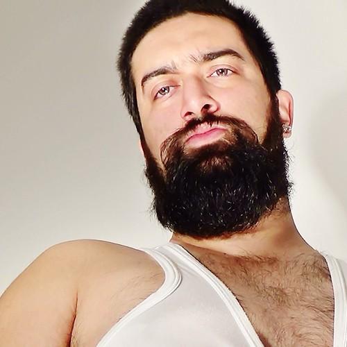 Gay hairy u tube style videos