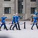 Marching Swedish guards