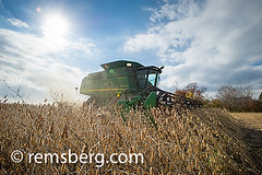 Combine harvesting soybeans in Jarrettsville, Maryland, USA (Remsberg Photos) Tags: sky usa sun field clouds farm farming harvest maryland machinery crop combine ag soybean agriculture harvester harvesting jarrettsvillemd