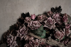 flowers (Andy Stafford) Tags: pink flowers paris grave rose wreath montparnasse